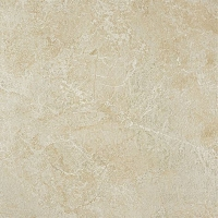 Force Ivory Matt 60x60